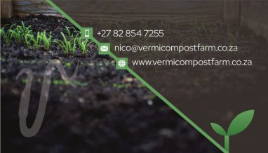 Vermicompost Business Card Design Back